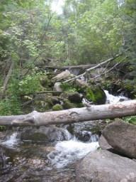 Day4-CreekOases