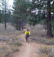 Sean on Emigrant Trail