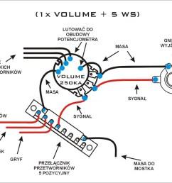 wilkinson zebra humbucker wiring diagram magnificent wilkinson pickup wiring diagram photos electrical rh  [ 1124 x 760 Pixel ]