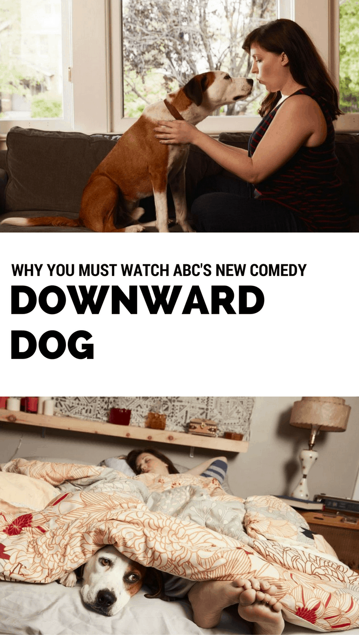 Why you must watch ABC's new comedy Downward Dog