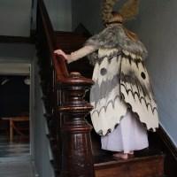 Halloween Moth Costume