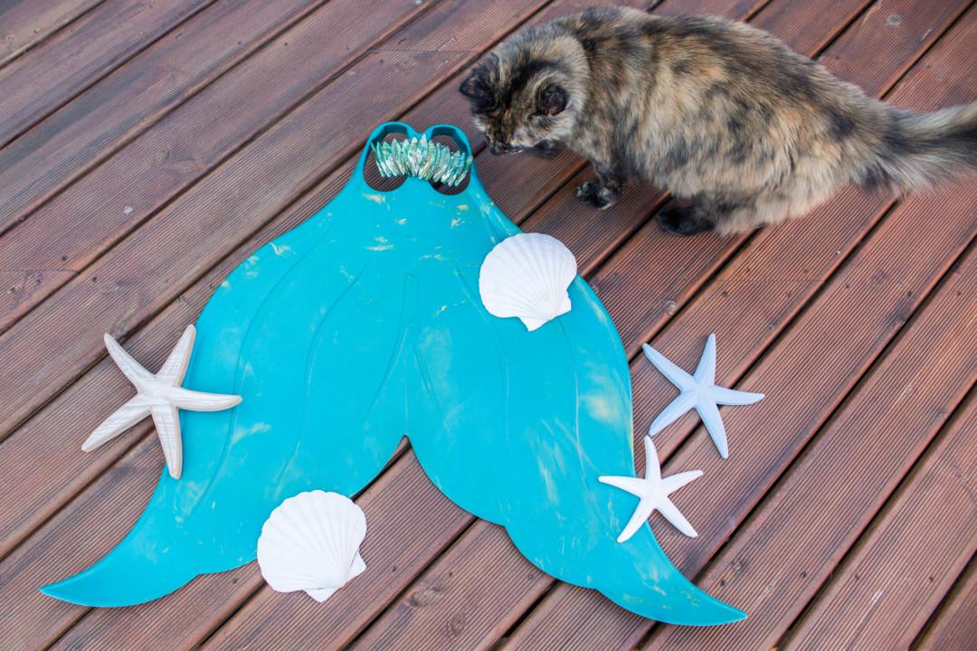 Mahina merfin (with cat) | Mermaiding UK | mermaiding.co.uk