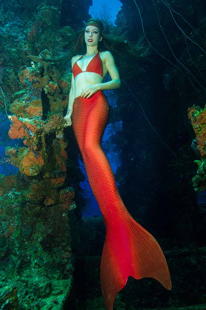 Professional Mermaid At Truk Lagoon Chuuk