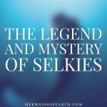 The Legend and Mystery of Selkies