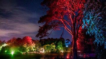Festival of Light at Mount Stewart Nov 20-29 2015