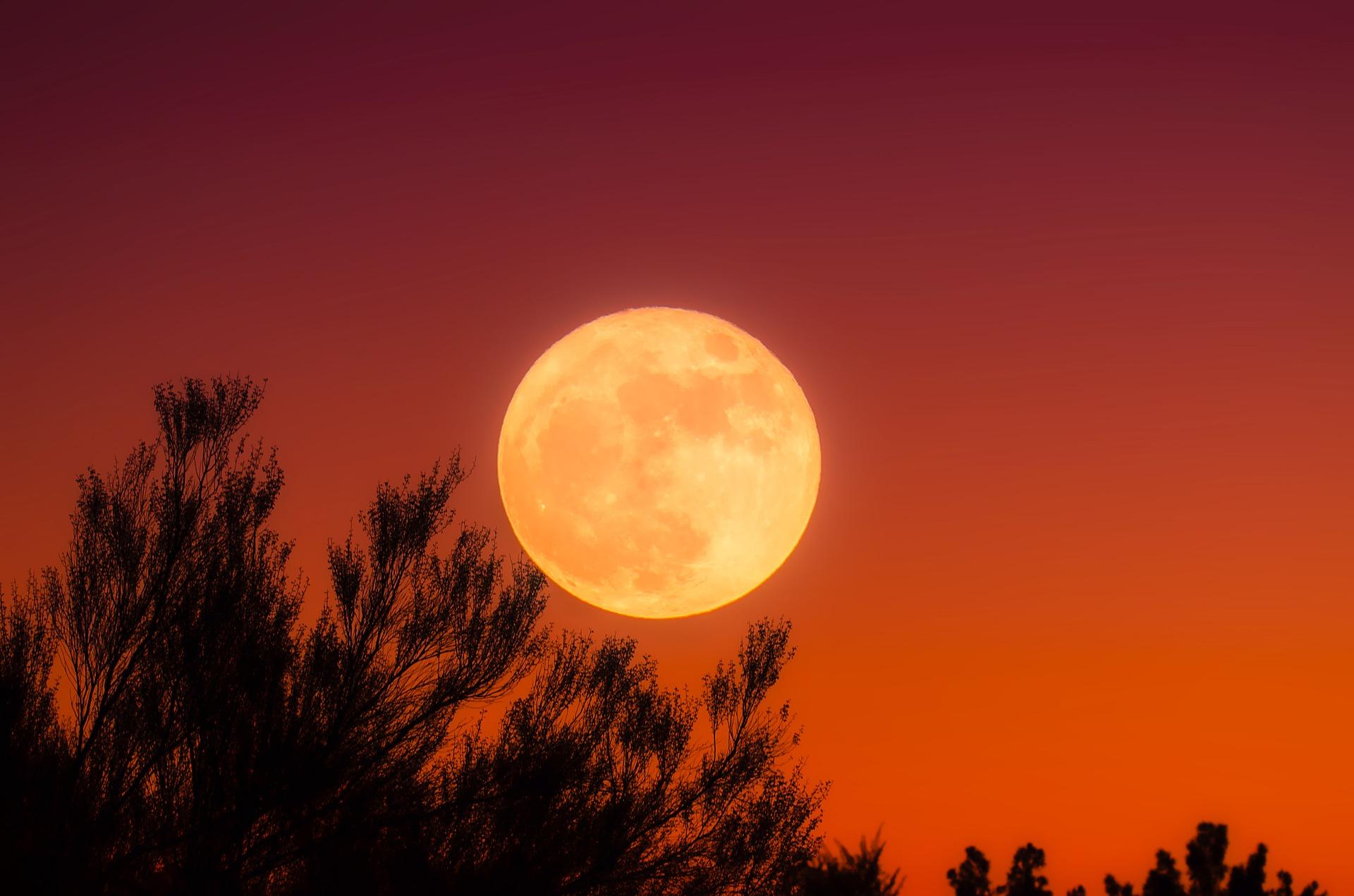 happy harvest moon wishes