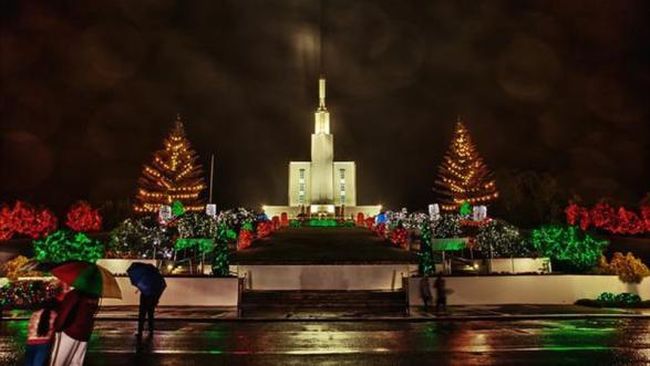 celebrations of Christmas in northern hemisphere and in New Zealand