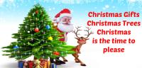 Christmas love slogans