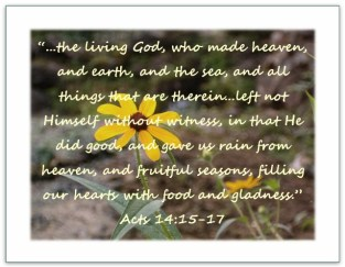 Scripture--Acts 14:15-17 written over a photo of a yellow flower