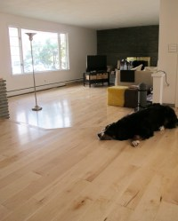 Installing Maple Hardwoods In The Living Room   merrypad