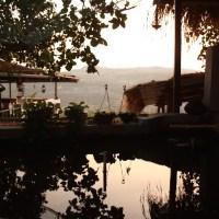 blissful by the banyan: homestay, off-mumbai