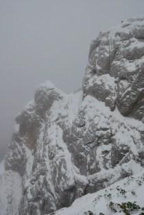 Valea Hornului 2017 (23)