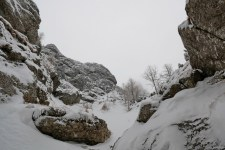Valea Hornului 2017 (6)