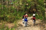 Other tourists wondering in the woods. I think they are heading from the 'cave', to the 'Keputren' area