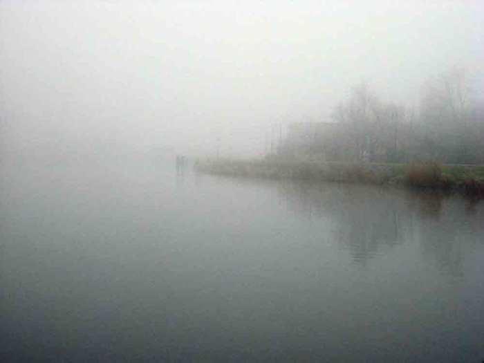 Fog by Ard Hesselink