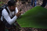Chadwick Nakagawa Photographing Joey Palm