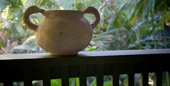 Vessel on the Lanai - Photo by Larry Cameron