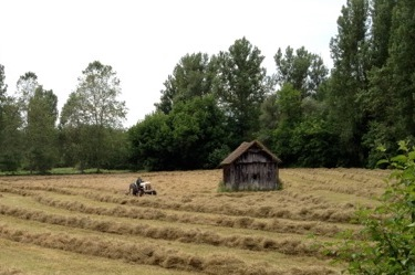 Hay Bales being harvested in France near W.S. Merwin's farmhouse. Photo by Stefan Schaefer.