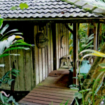 W.S. Merwin's Garden Shed and Dojo