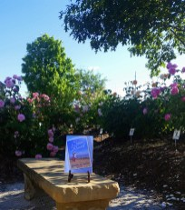 The Master Gardeners Educational Rose Garden at the Hamilton Fairgrounds