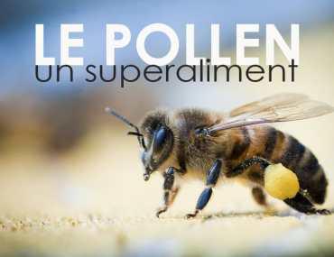 les bienfaits du pollen