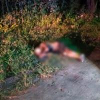 Localizan cuerpo quemado y con impactos de bala en Jiutepec