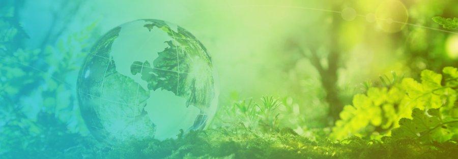 Reciclarea deseurilor din plastic pentru o economie circulara: ce responsabilitati au firmele si cine le ajuta