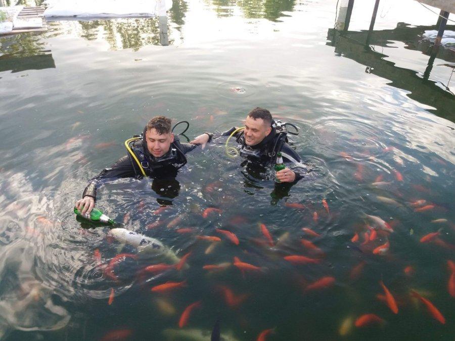 """Glamping, scufundări, peşti """"barmani"""", audiţii muzicale şi expoziţii subacvatice la lacul de la Dalnic"""