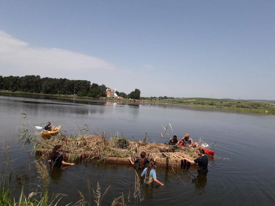 Proiect pilot de protejare a apelor şi biodiversităţii cu ajutorul plaurilor, lansat la lacul de la Reci