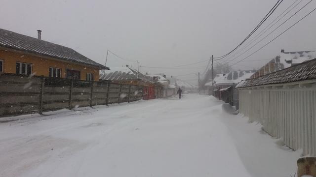 tg-iarna-2017-02