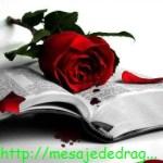 POZE IMAGINI SMS DE DRAGOSTE SI IUBIRE (44)