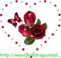 POZE IMAGINI SMS DE DRAGOSTE SI IUBIRE (76)