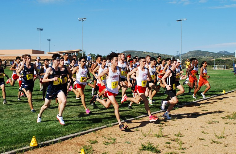 Cross Country teams continue hot streak with top ten rankings