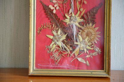 Très beau cadre de fleurs séchées, dont une edelweiss, signé par son auteur. Le fond est en tissu rouge. Parfait pour un mur de cadre ou un cabinet de curiosité!