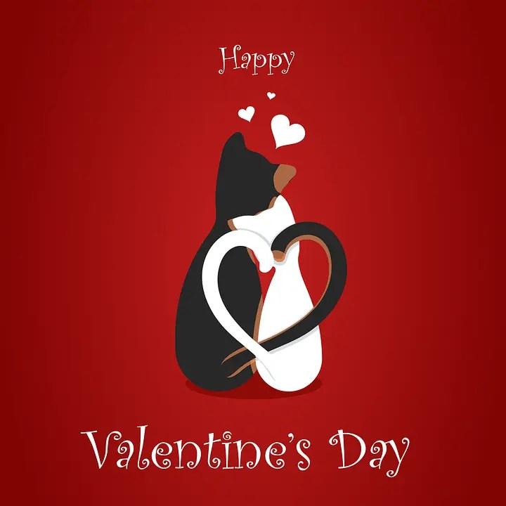 Fête de la Saint Valentin Saint-Valentin