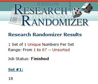 Results - Research Randomizer