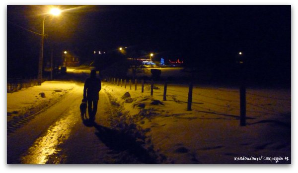 campagne-enneigee-aisne-02-noel-2010