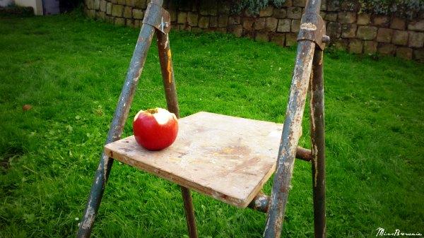 pomme-croquee-sur-escabeau