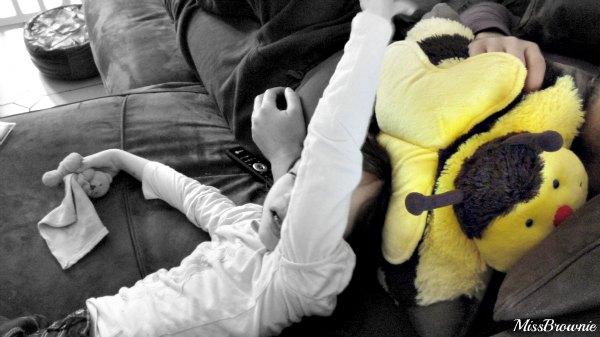 pillow-pets-abeille