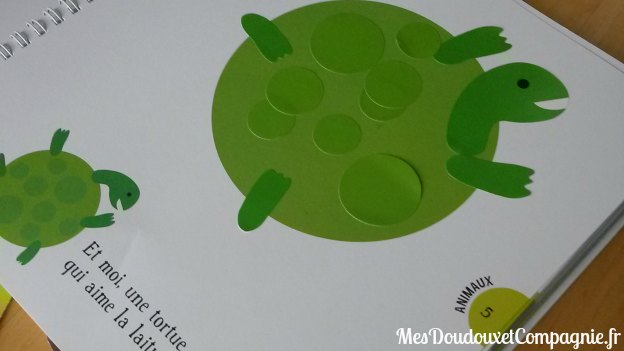 Tortue-gommettes