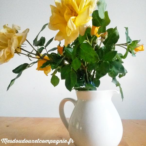 roses jaunes amitié