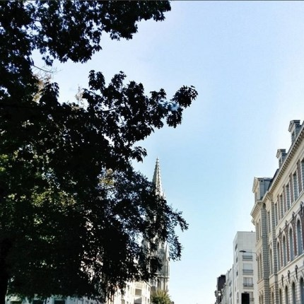 rue solférino lille carré