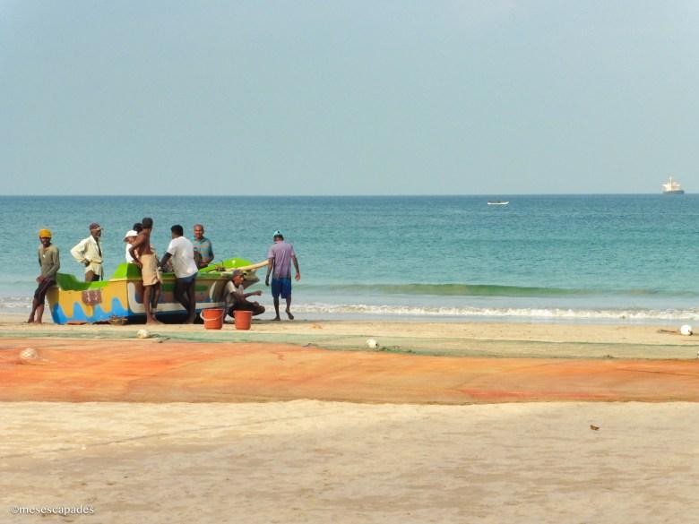 Découvrir les plages ensoleillées du Sri Lanka