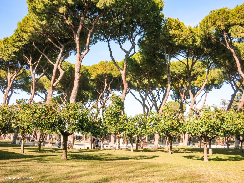 Le jardin du forum romain