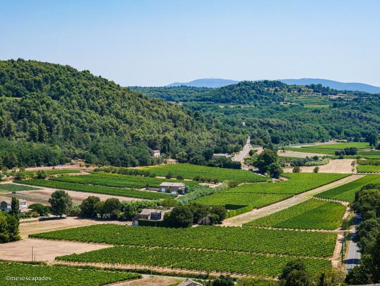 Vue sur la vallée depuis Ménerbes