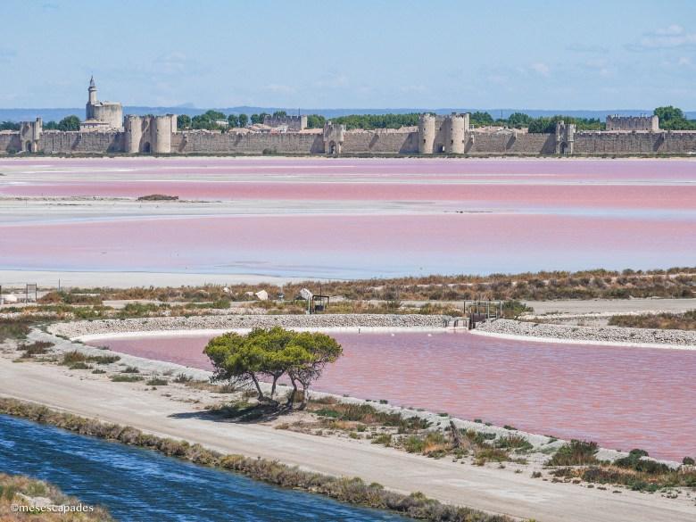 Les salins roses depuis la montagne de sel