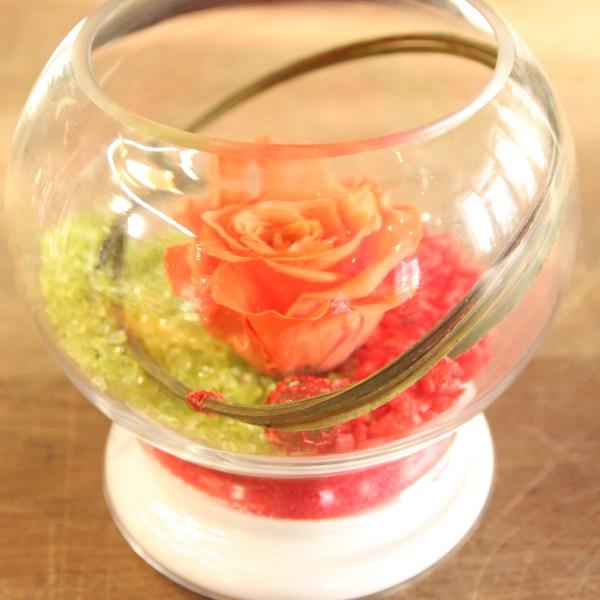Rose éternelle orange vase rond
