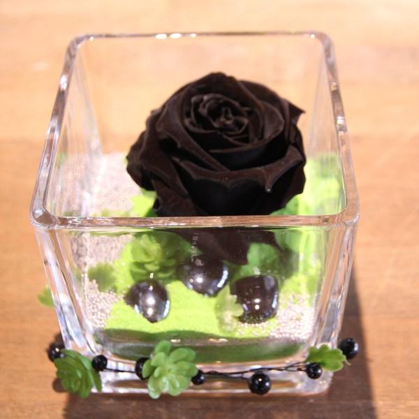 Rose éternelle noir vase carré