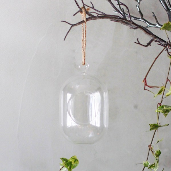 Glass Oval Terrarium