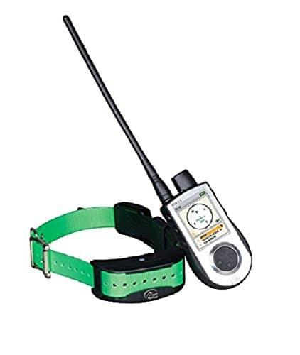 Collier GPS SportDog